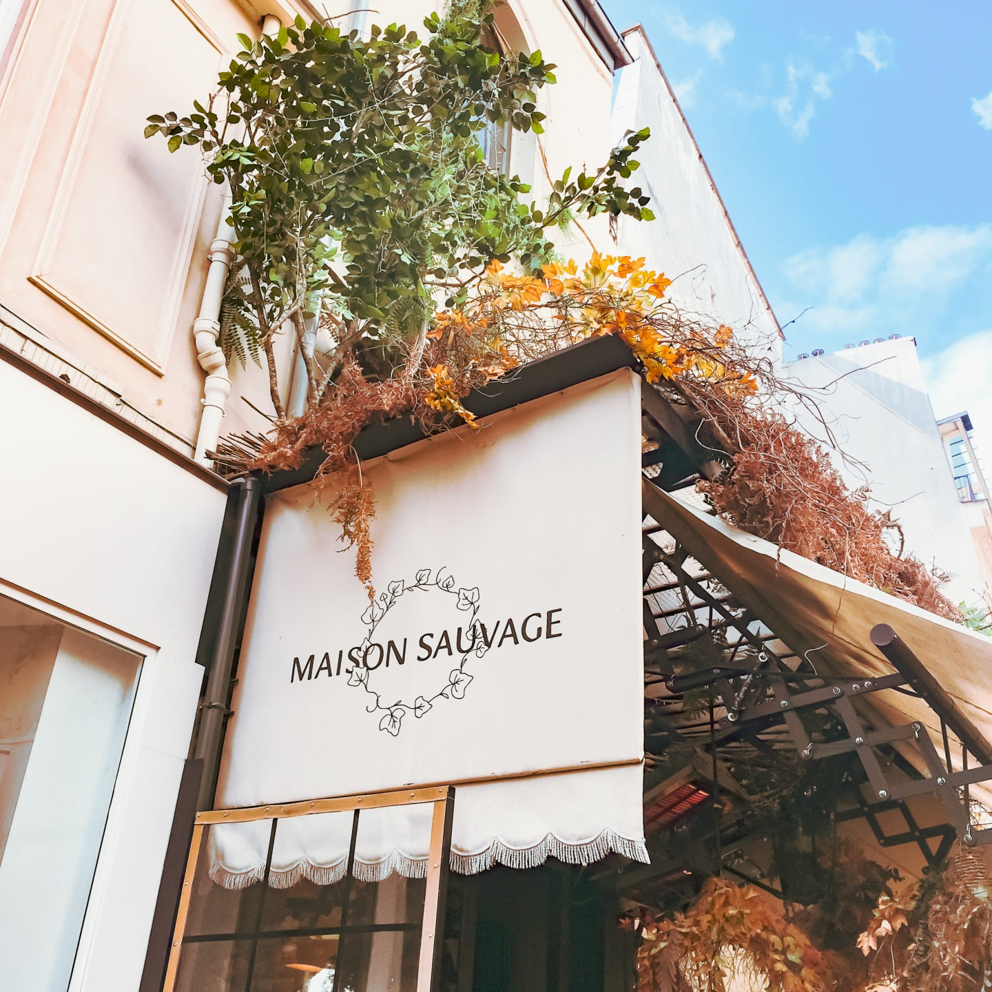 Brunch à Paris: Maison Sauvage