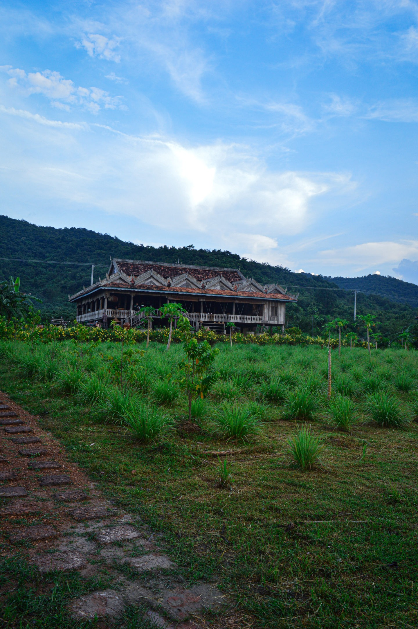 Cambodge Series #3 :  La Plantation, Kampot
